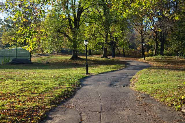 A curving concrete path through green grass in Central Park